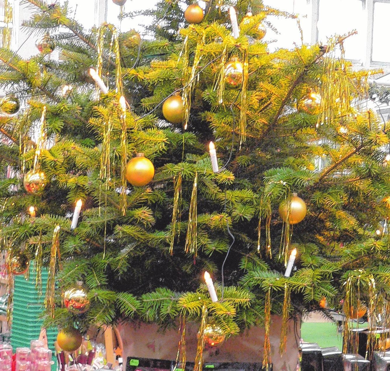 Die Bäume sind geschmückt. Das Weihnachtsfest kann kommen. Foto:dh