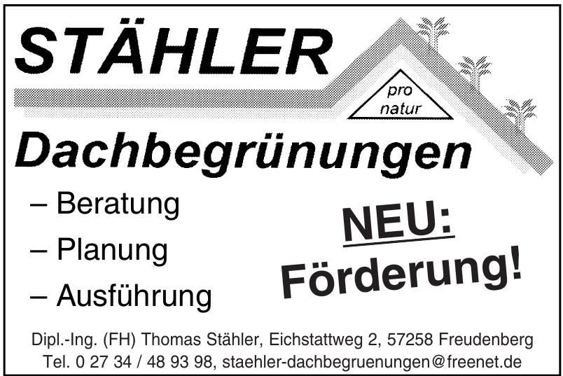 Dipl.-Ing. (FH) Thomas Stähler
