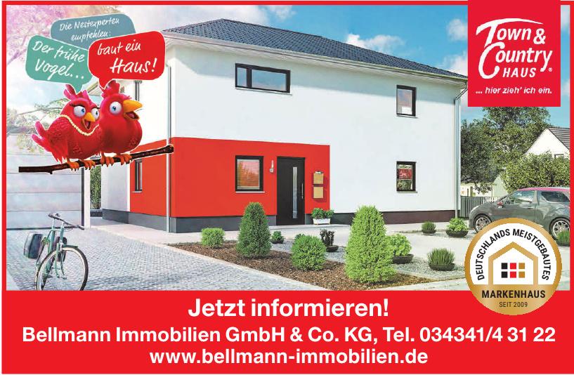Bellmann Immobilien GmbH & Co. KG