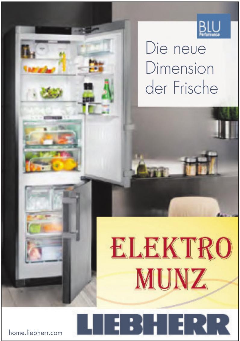 Elektro Munz