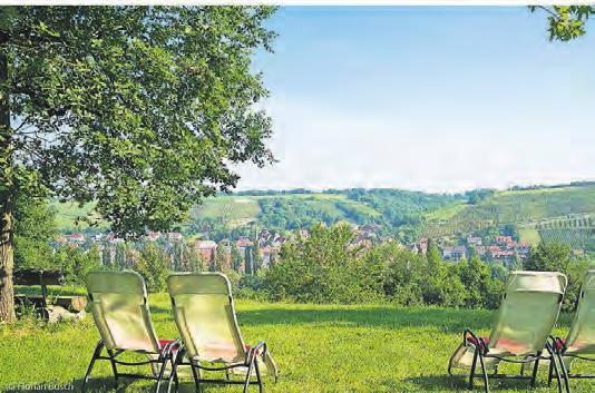 Garten und Terrasse laden zum entspannten Genießen ein.