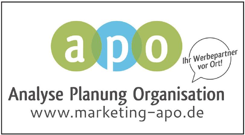 apo Analyse Planung Organisation
