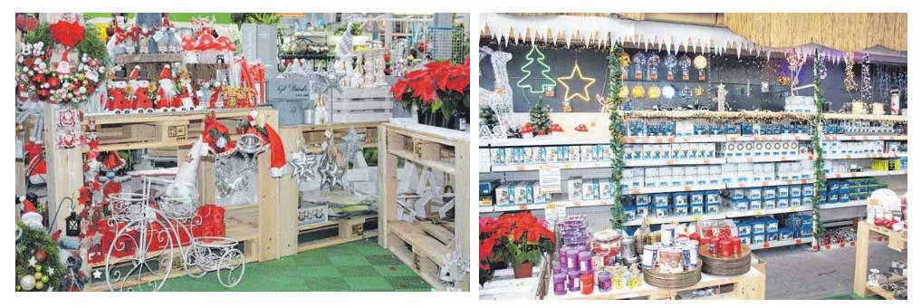 Festliche, leuchtende, moderne, klassische und fröhliche Weihnachtsdekorationen für jeden Geschmack. Sarah Schlitter und Eva Jachtner aus der Abteilung Pflanzen in Obi Fachmarkt und Geschäftsführer Markus Söffing sind bestens auf Weihnachten vorbereitet. FOTOS: JEANETTE LÖSCHBERGER