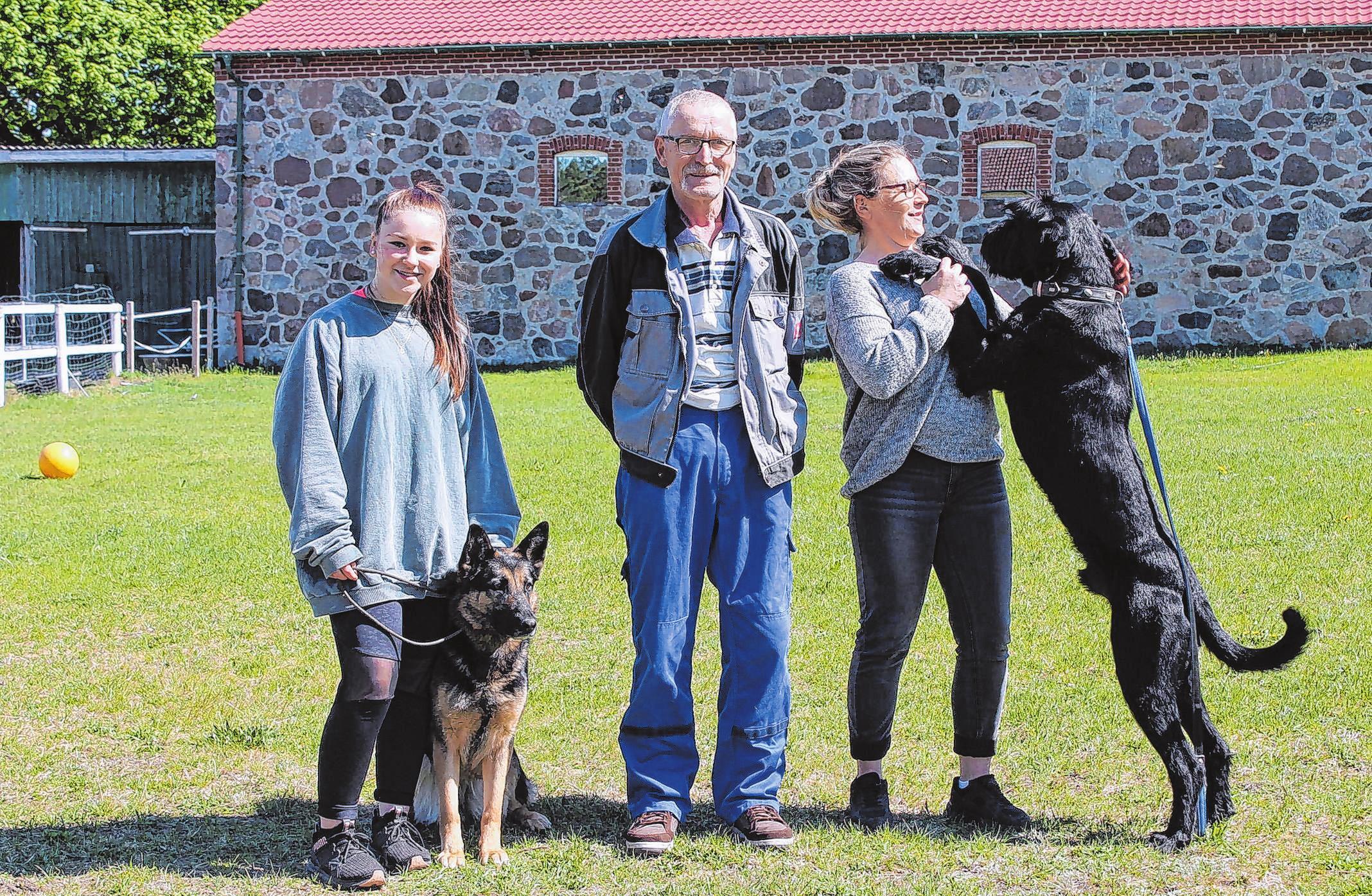 Bestens aufgehoben sind alle tierischen Vierbeiner in der Hundepension Darsikow. Fotos (2): M.Lerm