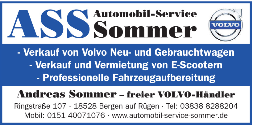 Automobil-Service Sommer