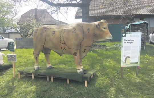Gutschein für besondere Erlebnismomente im Aargau Image 4