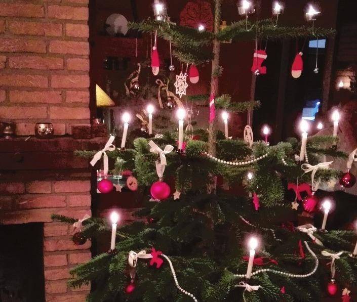 Richtig versorgt, hält der Baum bis weit über Silvester hinaus. Foto:Atelier Schümann