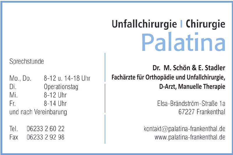 Chirurgie Palatina