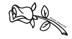Illustration: redspruce/123RF