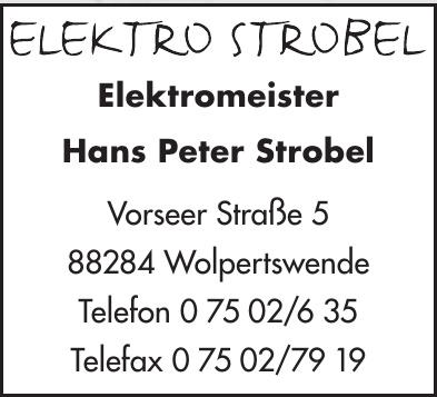 Elektromeister Hans Peter Strobel
