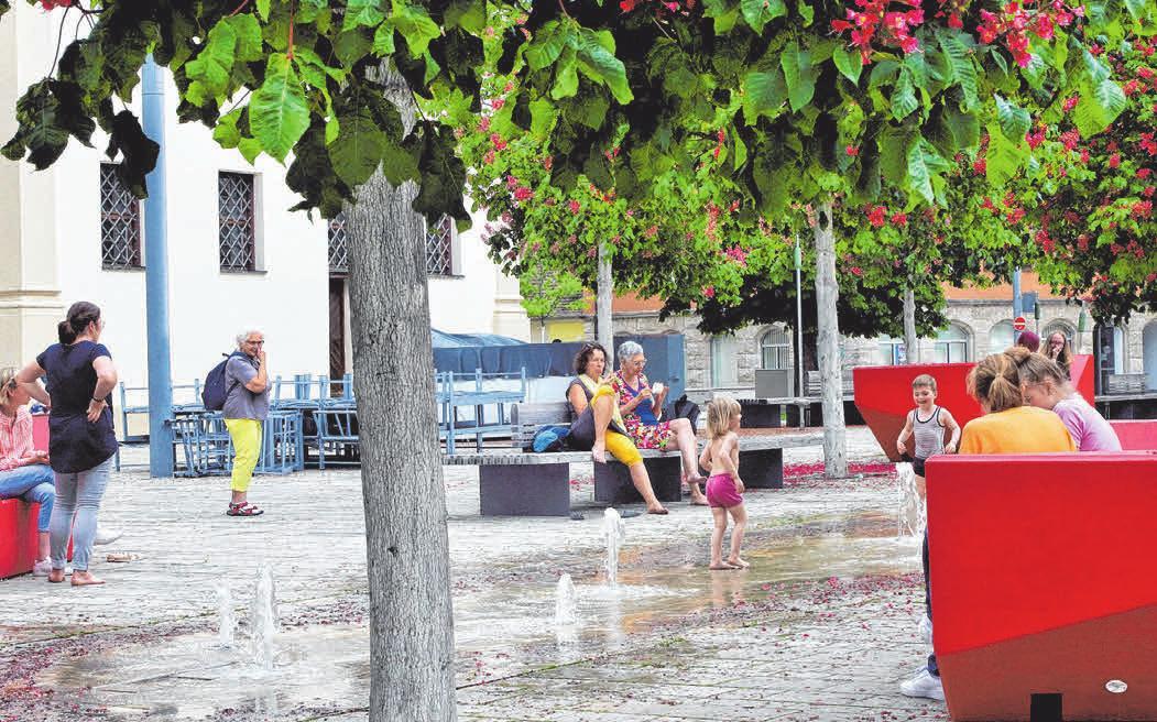 Am Ellwanger Marktplatz unter Kastanien die Seele baumeln lassen - Ein Erlebnis für Jung und Alt.