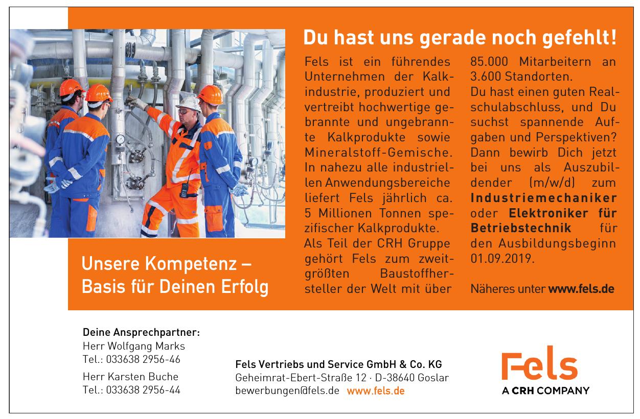 Fels Vertriebs und Service GmbH & Co. KG