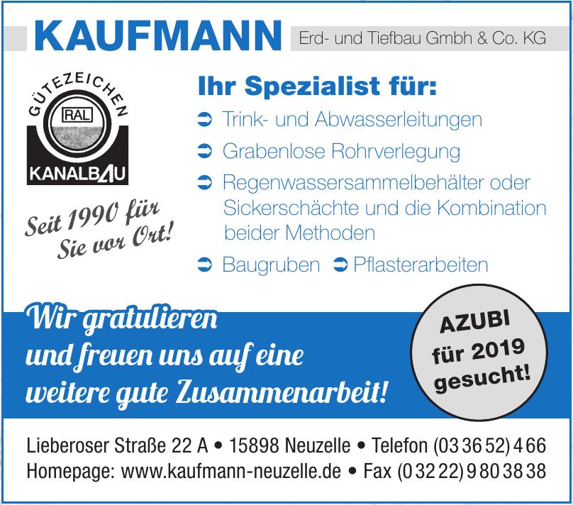 Kaufmann Erd- und Tiefbau Gmbh & Co. KG