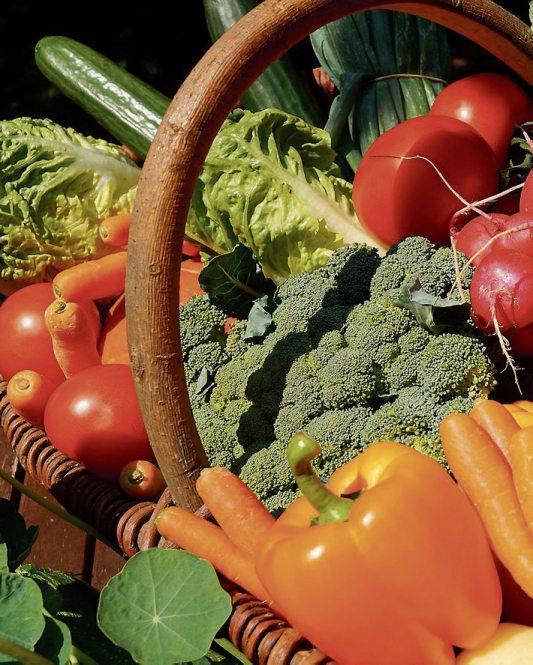 Gut und gesund Image 2