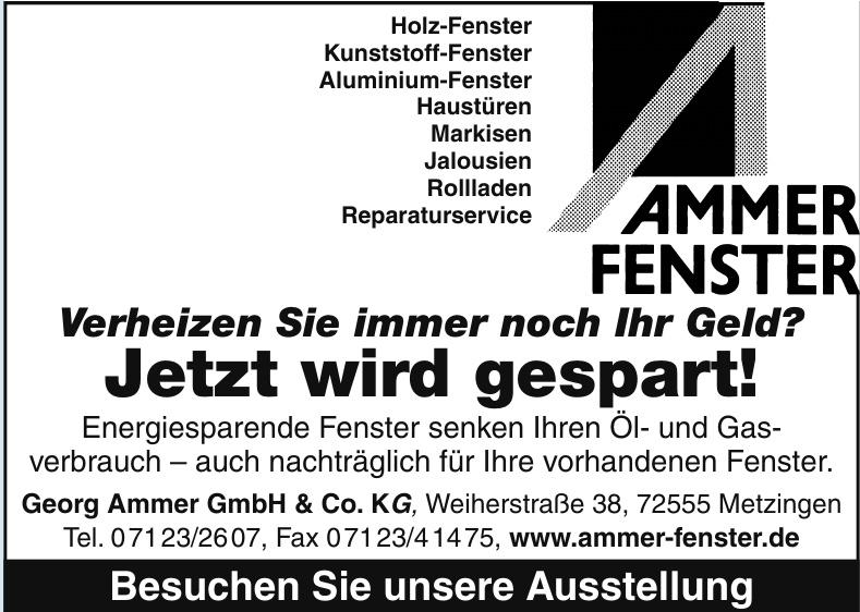 Georg Ammer GmbH & Co. KG