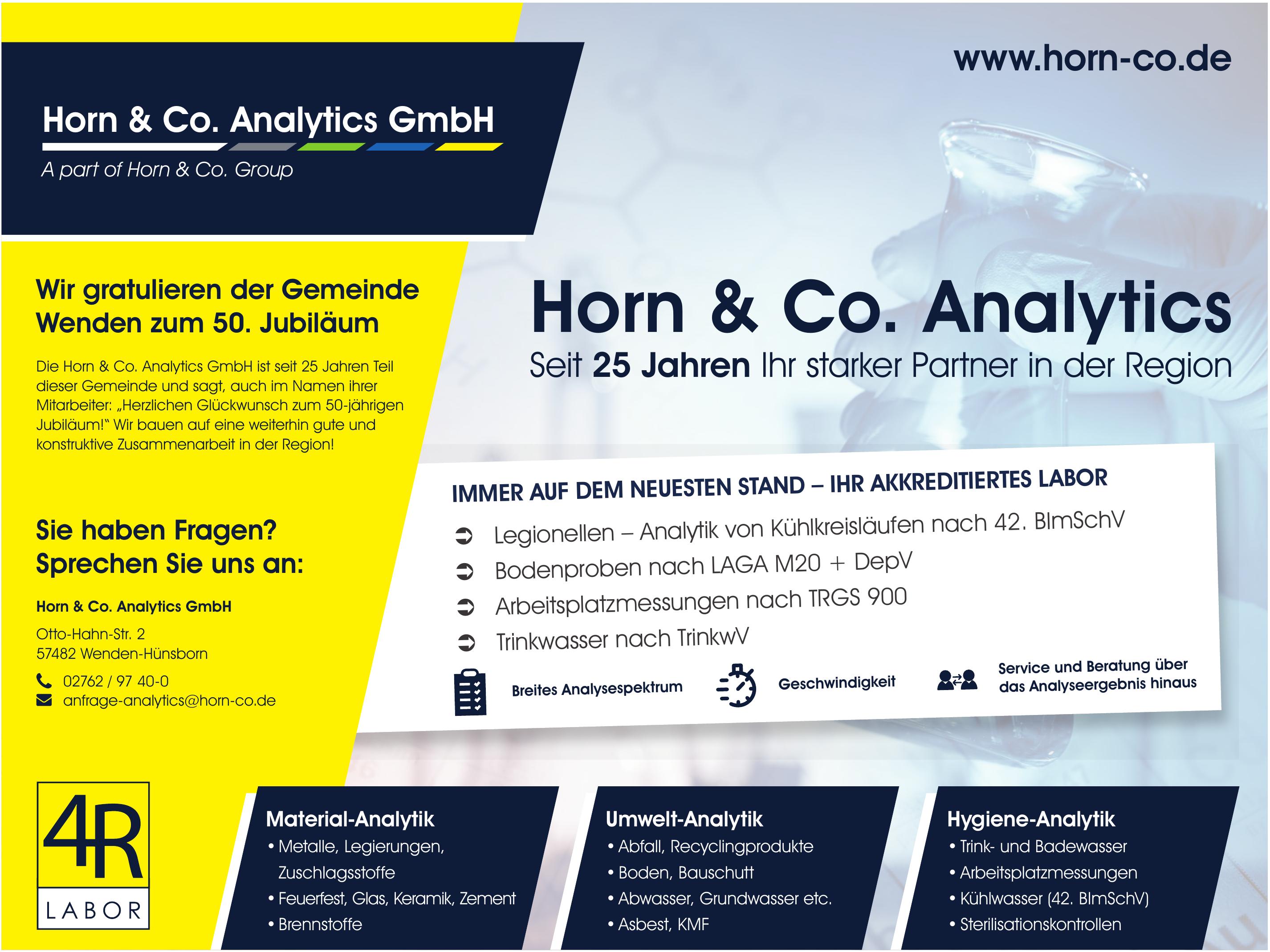 Horn & Co. Analytics GmbH