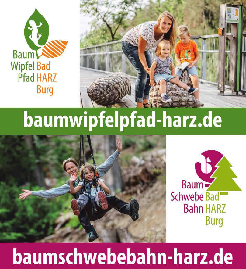 BaumSchwebeBahn Harz
