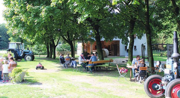 Im Schatten von Bäumen lässt es sich auf dem Dithmarscher Gänsemarkt gut aushalten