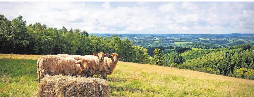Weites Land zum Wandern und zum Genießen. Foto Druckreif Medien