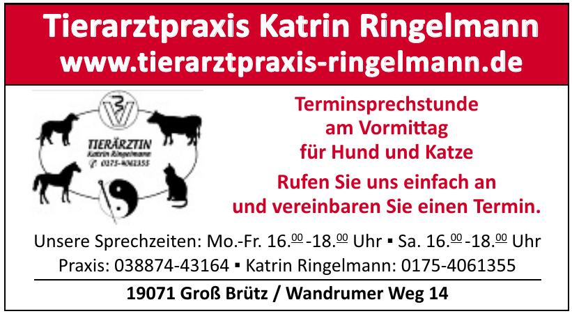 Tierarztpraxis Katrin Ringelmann