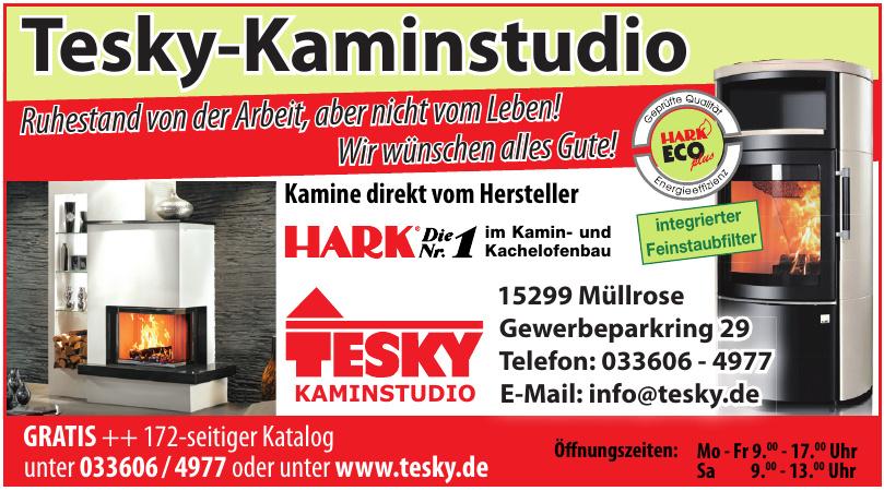 Tesky Kaminstudio