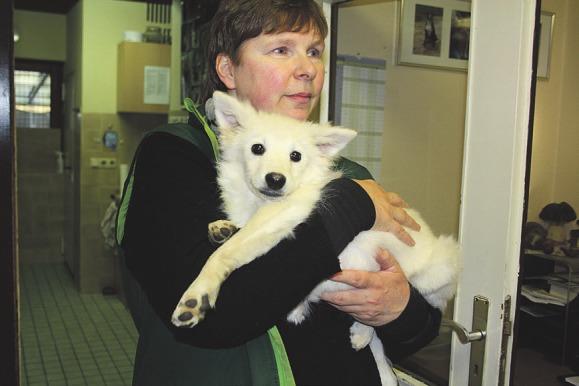 Tierpflegerin Dagmar Stahl mit dem kleinen Spitzwelpen Marie Foto: Pöhlsen