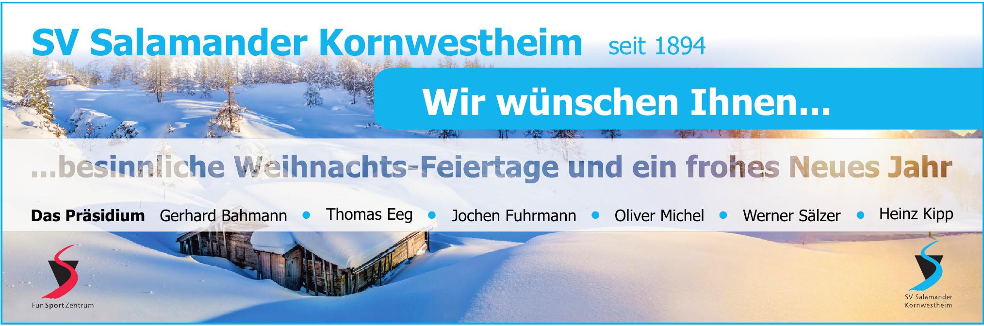 SV Salamander Kornwestheim