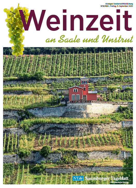Weinzeit an Saale und Unstrut