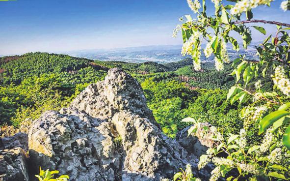 Grüße vom Mount Bonn