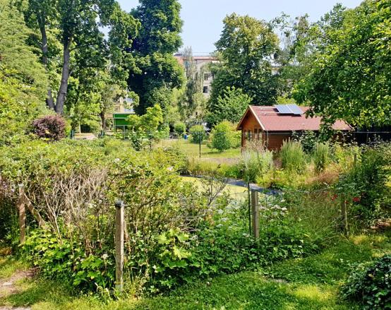 Der üppige Schulgarten mit 6000 Quadratmetern – und das mitten in der Stadt.
