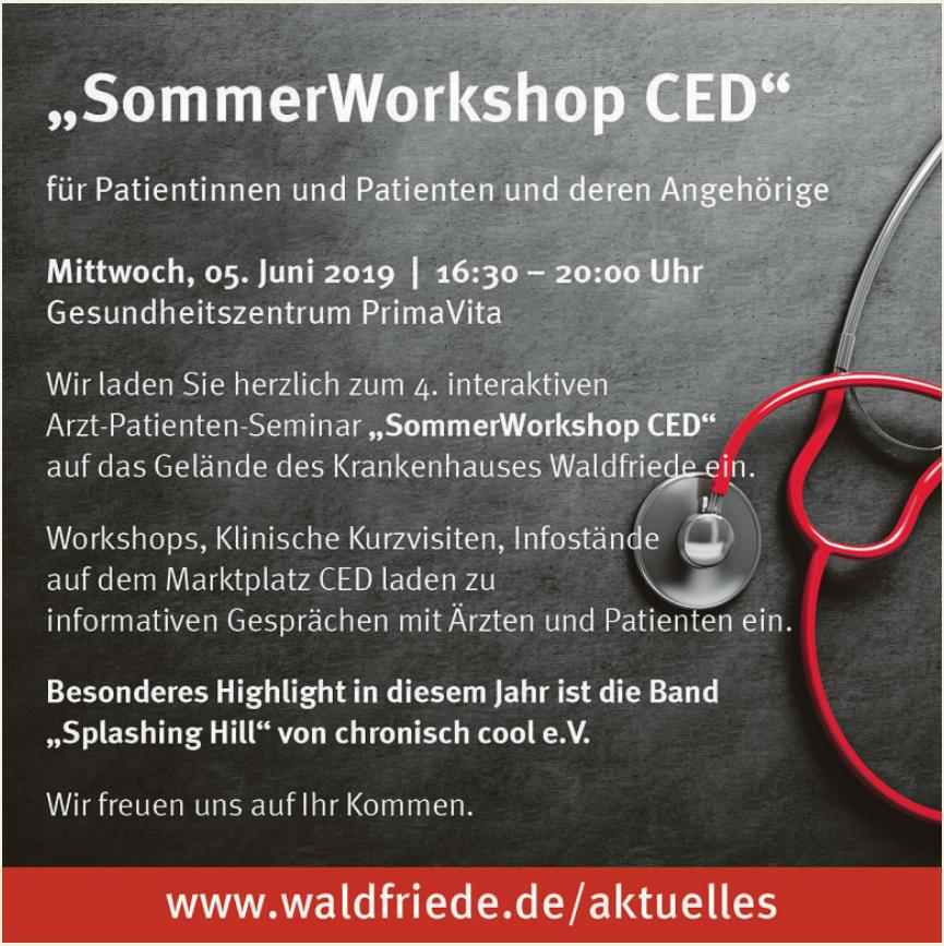 SommerWorkshop CED