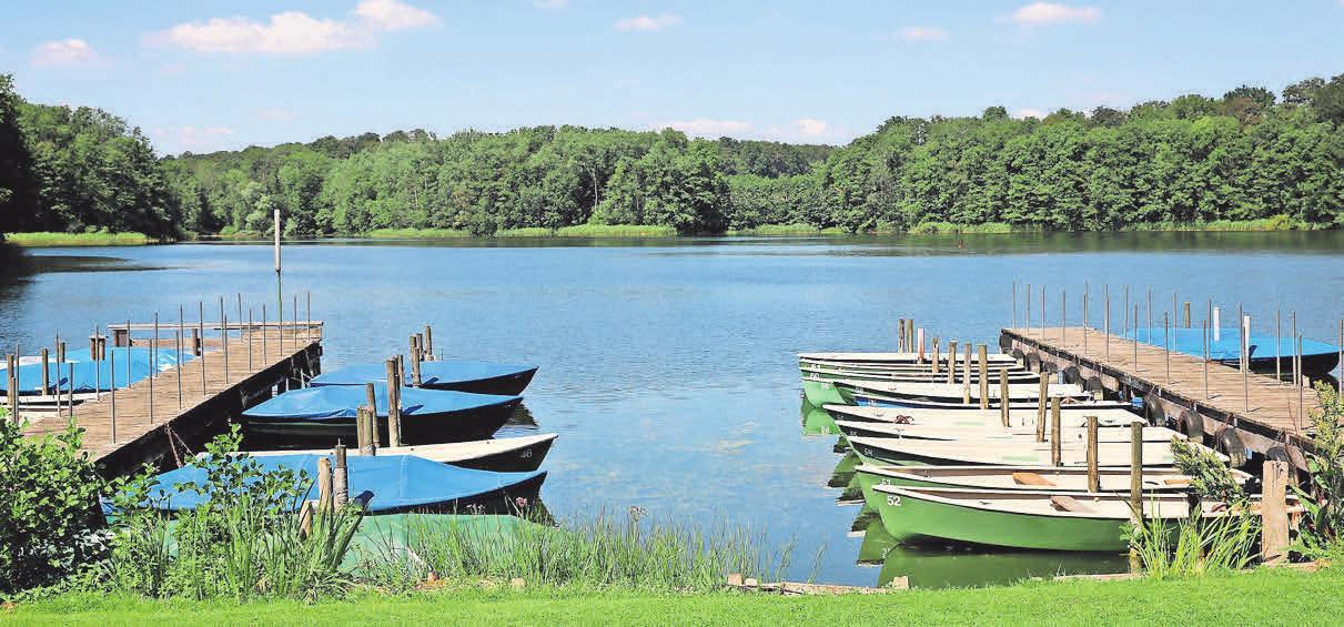 Natur- und Freizeitparadies Behlendorfer See.     Foto: Thomas Biller