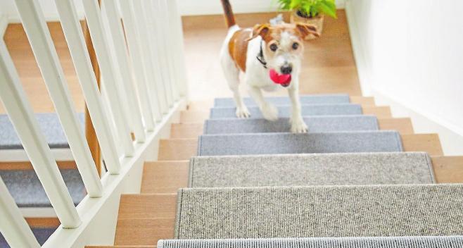 Ein ganzes Stück sicherer wird eine Treppe, wenn man diese mit speziellen Teppichfliesen belegt. Foto: Tretford