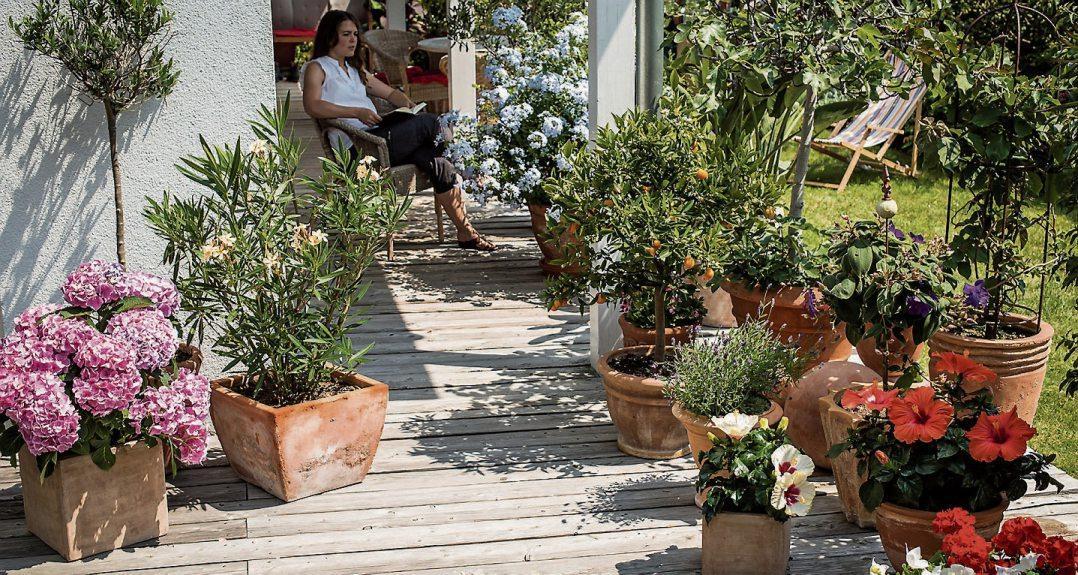 Vor allem Pflanzen, die auf Balkon und Terrasse in Kästen und Kübeln wachsen, sind für die regelmäßige Versorgung mit Nährstoffen dankbar. Bild: Hauert