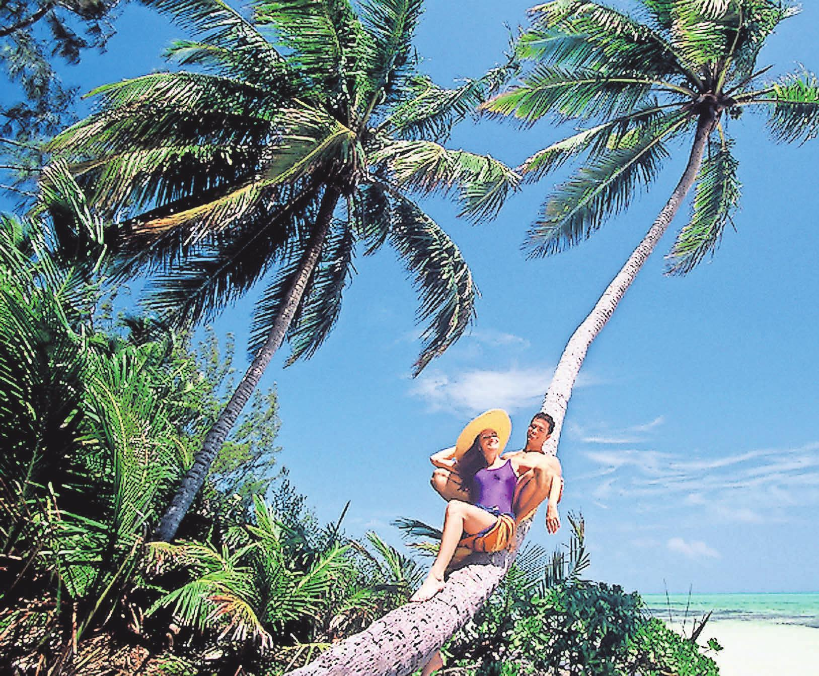 Unter Palmen investieren? Ein Steuerberater kann prüfen, ob diese Option sinnvoll ist.    Foto: Bahamas Tourist Office