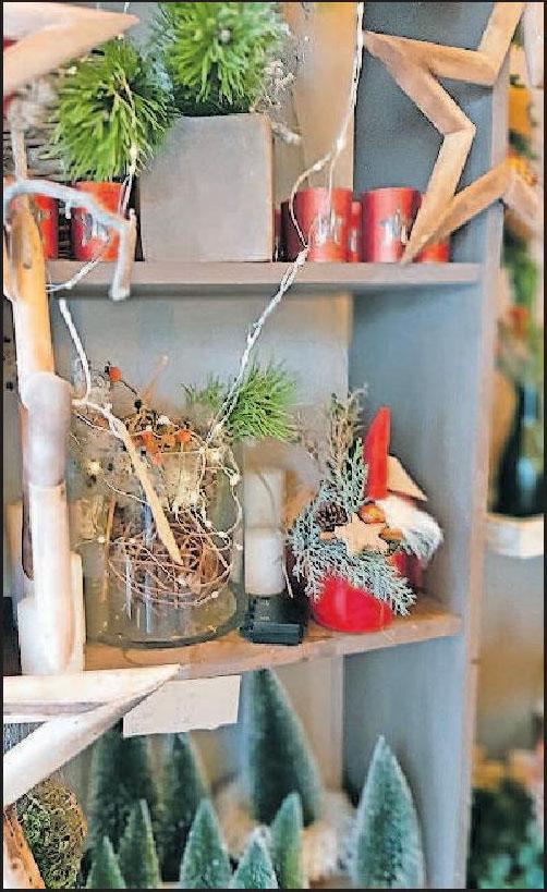 Sterne, Zweige und Lichter: Das Blumengeschäft Floralis in der Oberstraße in Mundenheim hat vielWeihnachtsdekoration zu bieten. FOTO: SCHAAR