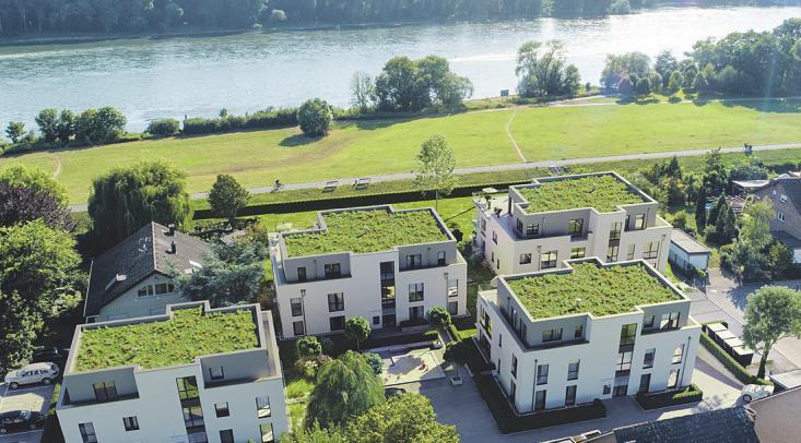 Das klassische Einfamilienhaus könnte wegen Flächenknappheit zum Auslaufmodell werden Image 14