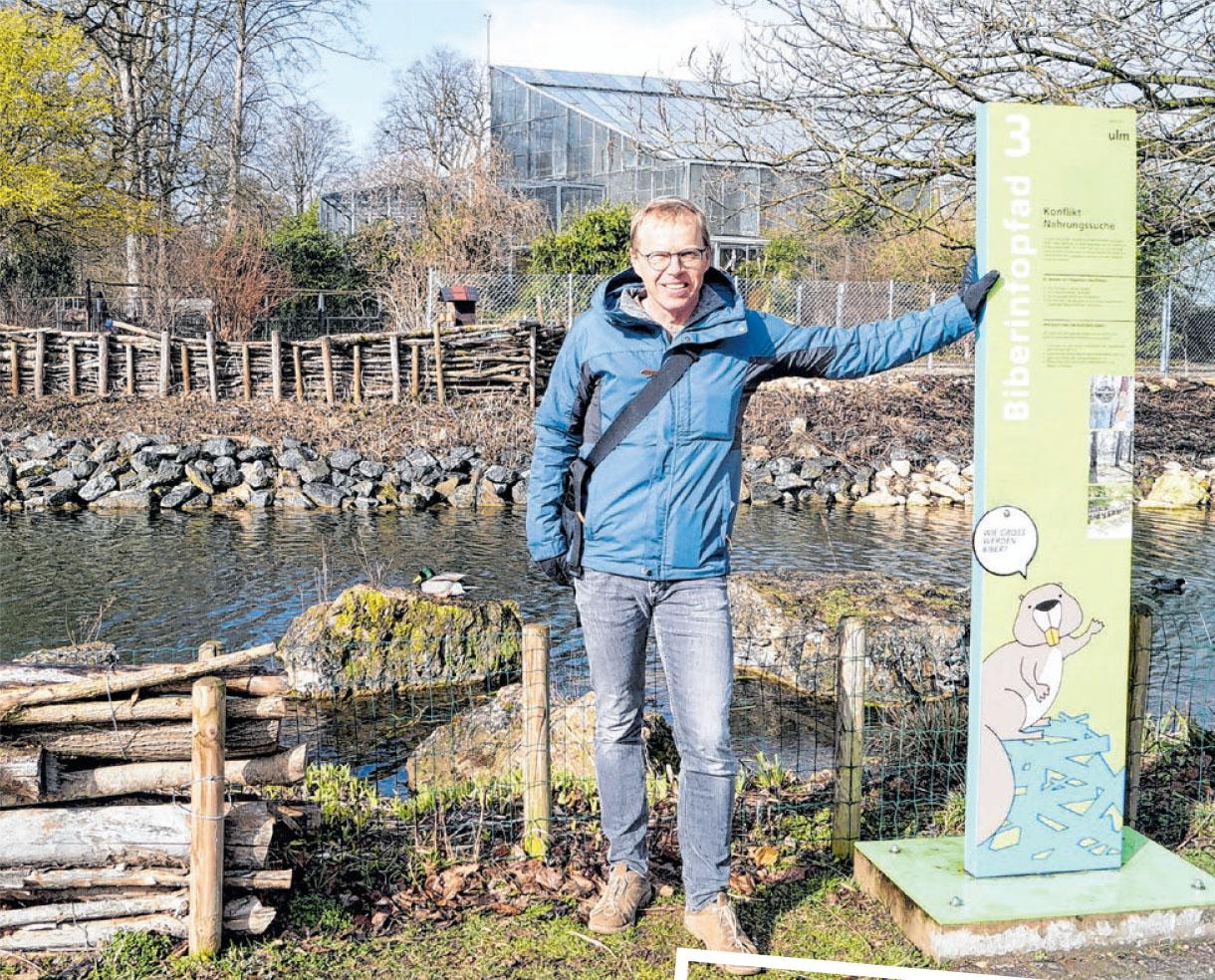 Christian Giers am Wasserkanal in der Friedrichsau. Der Biber ist omipräsent. Neben Infostelen und Statuen weisen auch die Schutzzäune auf den Nager hin.