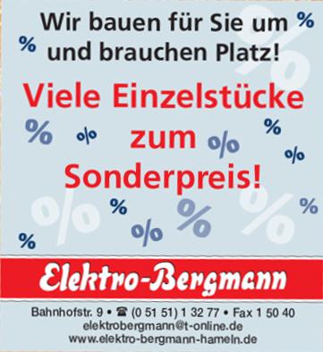 Elektro-Bergmann