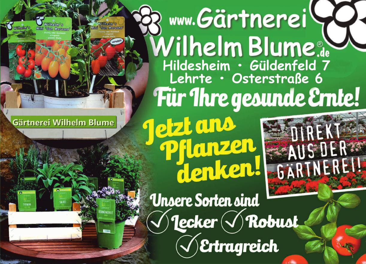 Gärtnerei-Wilhelm-Blume