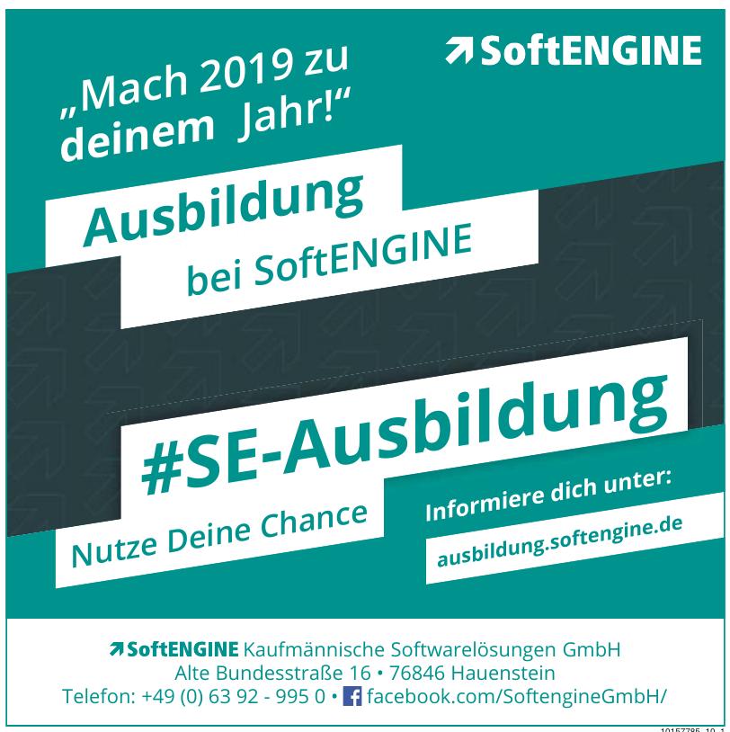 SoftENGINE GmbH / Matthias Neumer, Dirk Winter