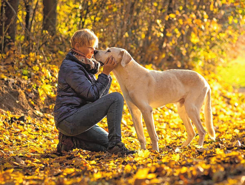 Liebevoller Abschied - Mein Hund - Mannheimer Morgen