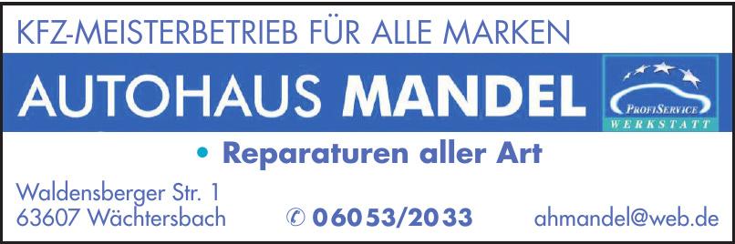 Autohaus Mandel