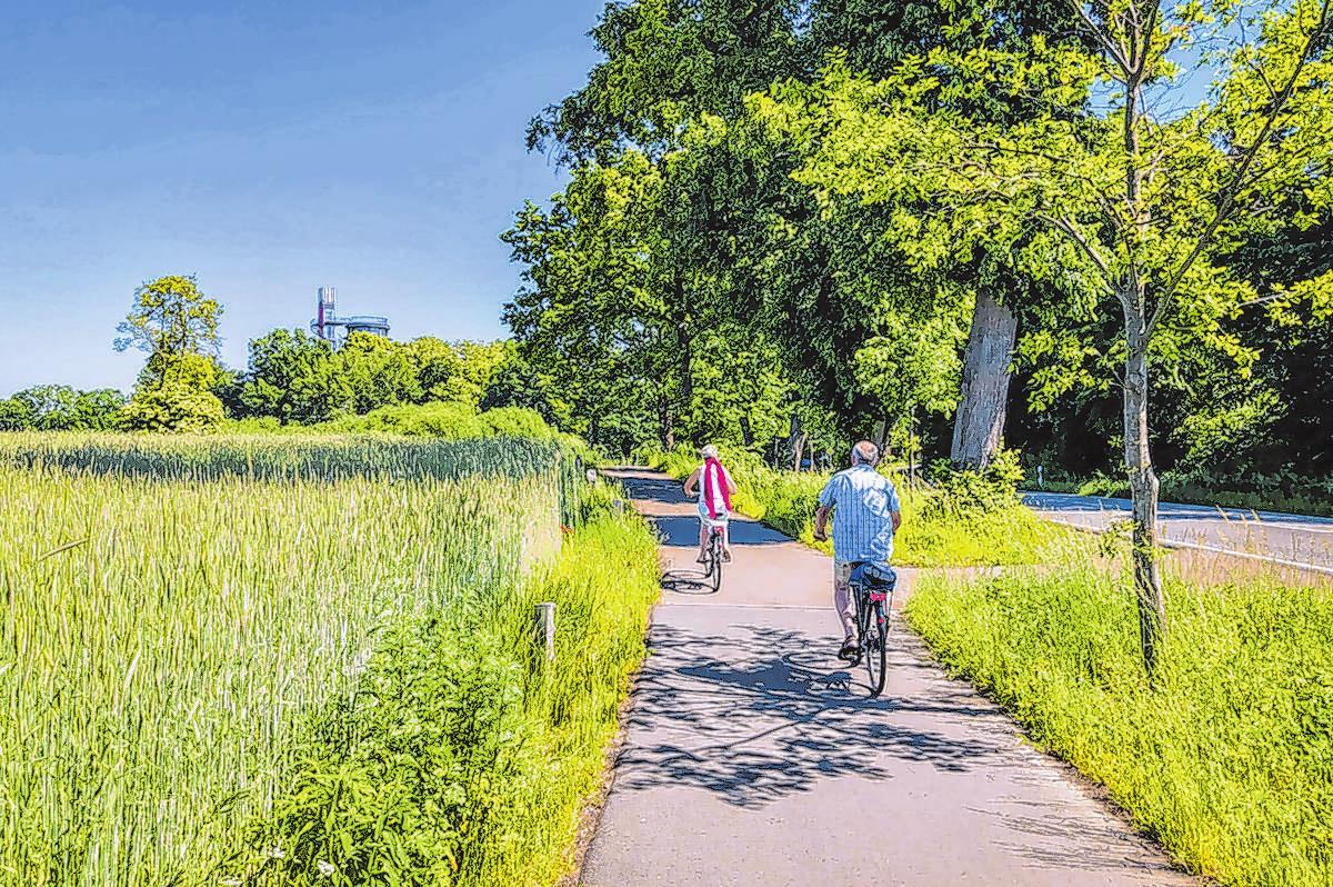 Blick vom Berlin-Usedom-Radweg auf den Biorama-Turm in Joachimsthal. Fotos: Michael Mattke