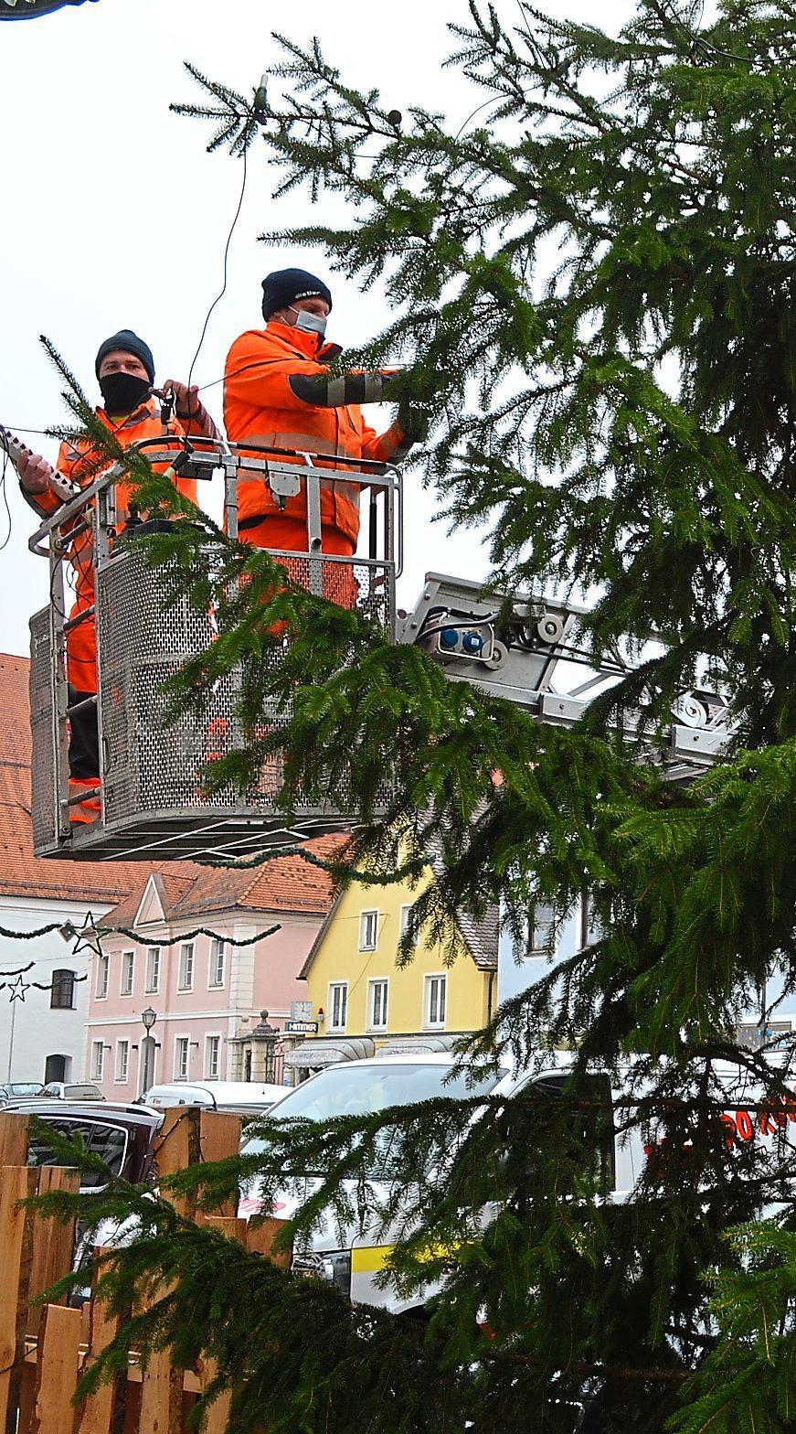 Zu jedem Weihnachtsfest gehört auch ein Christbaum – zu Hause im Wohnzimmer und in der Stadt auf dem großen Platz vor dem Rathaus. Auch in Beilngries steht er jetzt. Foto: Deisler