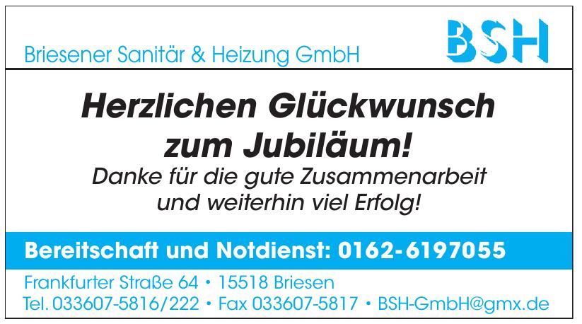 Briesener Sanitär & Heizung GmbH