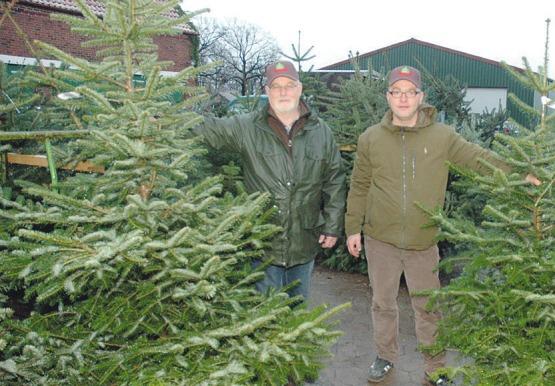 Vater Jens (l.) und Sohn Jan Diercks kümmern sich um den Tannenbaumverkauf auf dem Hof ihres Pinneberger Baumschulbetriebes Foto: Klein