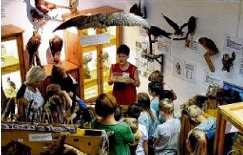 """Für die Ferienkinder hat das """"Haus am See"""" ein abwechslungsreiches Herbstferienprogramm auf die Beine gestellt. FOTO: TILO KRIPPENDORF"""