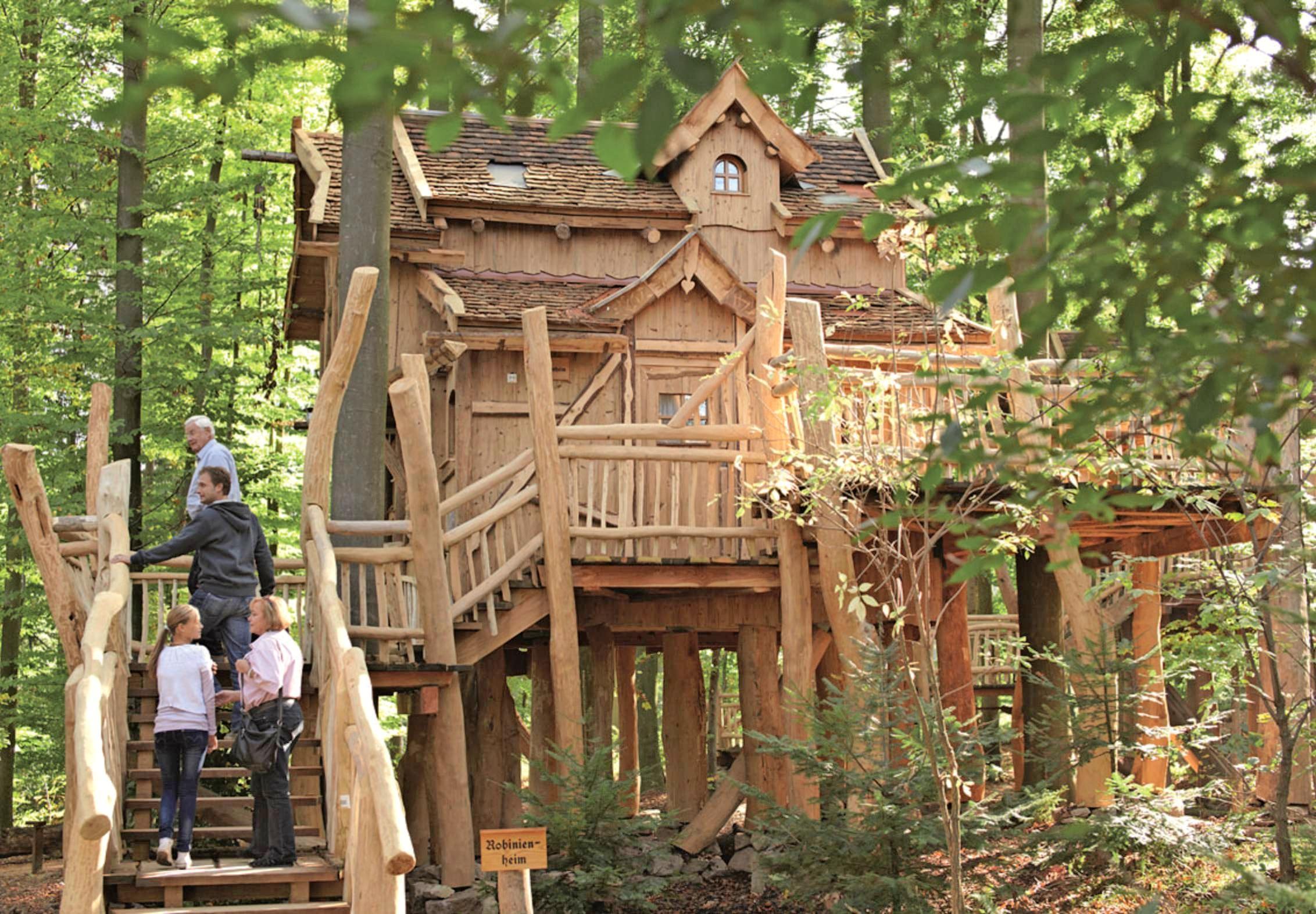 In den komfortabel eingerichteten Baumhäusern können Gäste in bis zu fünf Meter Höhe nächtigen.