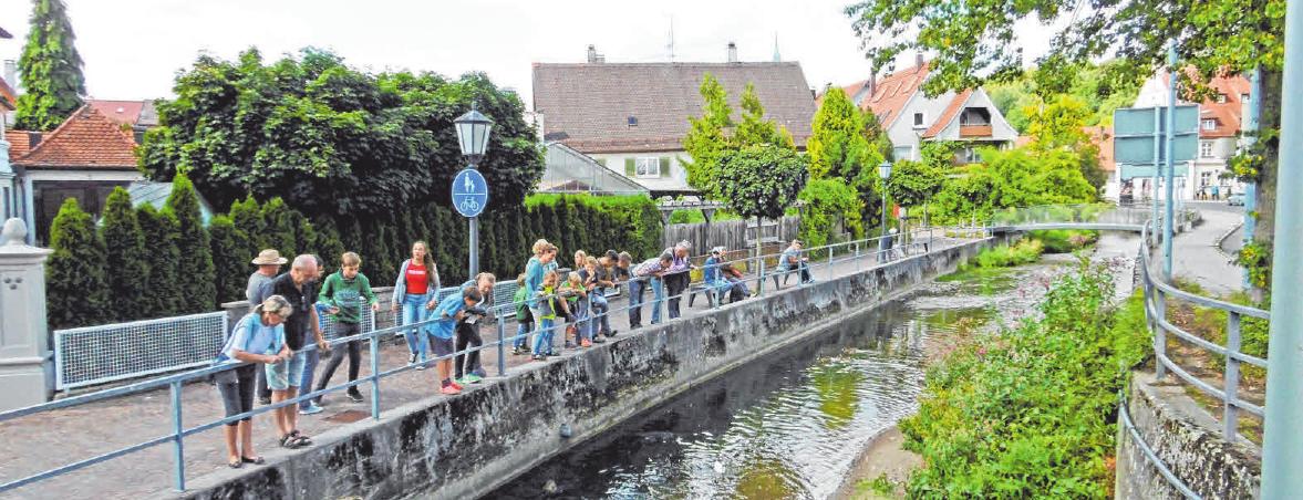 Eine der Attraktionen in Ochsenhausen ist das Gässle. FOTOS: PRIVAT